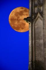 L'heure des forces du Mal ! (Tonton Gilles) Tags: alençon normandie dragon heure bleue gargouille basilique église notredame dalençon bleu éclipse de lune photomontage pleine détail urbain