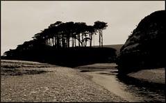 mouth of the River Otter, Budleigh Salterton (Philip Watson) Tags: budleighsalterton devon seaside eastdevon riverotter