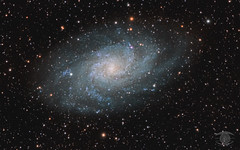 M33 - The Triangulum Galaxy (Dark Arts Astrophotography) Tags: astrophotography astronomy asi1600mc night nightscape nature natur nebula nightsky nikon longexposure space sky stars star science galaxy triangulum m33 unspoiledla astrometrydotnet:id=nova3757624 astrometrydotnet:status=solved