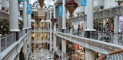 Just Another Day at the Mall (Not) (Bill 3 Million views) Tags: festivaloftrees bcchildren'shospital empresshotel baycentre thebay hudsonsbay christmas christ jesus 26th annual festival trees christmastrees 2019 foundation
