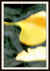 Verwerfungen / Alle Rechte vorbehalten © AndiDroid ;-) (AndiDroid ;-)) Tags: andidroid icm icmphotography foto photo photography photographie naturphotographie naturephotography art artwork artdigitalvirtualgallery kreativepeople blur flou movement flow cameramovement color colour colours explore herbst automne eigenartgestischefotografie ownartgestualphotography