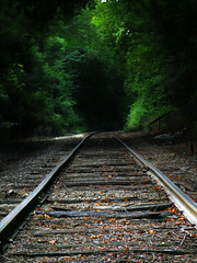 Train Tracks (markburkhardt) Tags: green tunnel light rails shadows trees train tracks moody dark