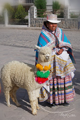Woman with a lama I (marko.erman) Tags: colca valley river yanque village folk traditional tradition dressing bridal parades portrait colorfull sony outside sunny peru southamerica latinamerica clothes hat decorated embroidery lama animal
