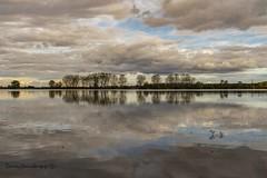 Laguna de Lor (tonygimenez) Tags: cascante pantano agua cielo nubes sombra reflejos sony a7ii sonya7ii sony24240