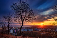 sunset (Slávka K) Tags: colors evening sunset sky trees city slovakia view landscape country 2019