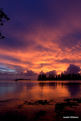 Pacific sunset 5 by iezalel williams IMG_0133 (iezalel7williams) Tags: sunset seascape sea canoneos700d water reflection photography planetearth paradise photo beautiful nice nature beauty scenary newcaledonia natural seawater silhouette sky pink purple blue naturalplace travel pacific happylife high energy vibration love light landscape lovely land islet pinetrees thinkpositive thankyou