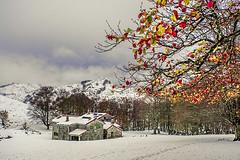 Egiriñao (Jabi Artaraz) Tags: egiriñao gorbeia edurra nieve otoño winter invierno