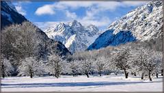 First white morning (watbled05) Tags: arbres extérieur givre hautesalpes massifdesecrins montagne neige paysage rochers vallouise