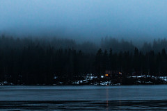 Rain and Misty Forest (langdon10) Tags: countryside lake norway rotnes water cabin fog forest ice mist shoreline snow tree trees winter ørfiske