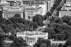 A Distant View (Thomas Hawk) Tags: america dc districtofcolumbia thewhitehouse usa unitedstates unitedstatesofamerica washingtondc washingtonmonument whitehouse architecture bw washington fav10 fav25 fav50 fav100