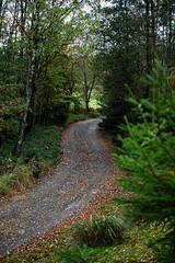 191101_212_Aywaille (Patrick Decorte) Tags: belgique belgium aywaille mondesauvagedaywaille mondesauvage parcanimalier animalier patrickdecorte paysage nature chemin allée nikond700
