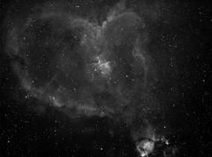 20191118 Heart Nebula Ha (Roger Hutchinson) Tags: nebula deepsky ts65quad asi1600mmpro zwo heartnebula ngc896 astronomy astrophotography space london astrometrydotnet:id=nova3757612 astrometrydotnet:status=solved