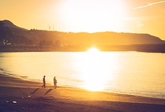 ILCE-795 mm20190001 (piro_kichi) Tags: a7 alston mountadapter sony l lens sea beach shore sunset magichour