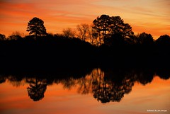 At Red Mill again.... (Joe Hengel) Tags: redmillagain lewes lsd lowerslowerdelaware lewesde delaware de darkness morning silhouette silhouettes reflection reflections pond redmillpond sussexcounty morninglight goodmorning watchingthesunrise sunrise beautifulmorning water
