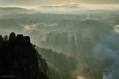 Rays of sunlight (Petra Schneider photography) Tags: elbsandsteingebirge elbesandstonemoutains saxony sachsen sächsischeschweiz saxonswitzerland raysofsun raysofsunlight crepuscularrays earlymorning mist