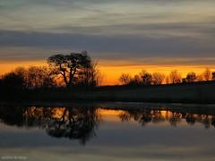 Aus einer anderen Welt (from another world) (skruemel86) Tags: sonnenaufgang teich bäume reflexionen landschaft panasonic lumix fz82 sunrise pond tree reflections landscape bagger excavator silhouette ngc outside