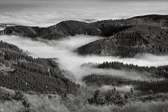 crouching (Aspenlaub (blattboldt)) Tags: groserinselsberg thuringia germany europe nature mist nebel zeiss sony carlzeiss ilce7rm3 alpha7riii manualfocus manualiris manualexposure ⚶ emount lātitūdō circularpolfilter loxia2485 loxia2485sonnar 85mm 51695547 sonnar landscape topography rhapsodic