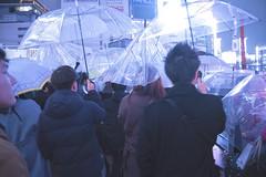 LET THE RAIN SHINE IN 82 (ajpscs) Tags: ©ajpscs ajpscs 2019 japan nippon 日本 japanese 東京 tokyo city people ニコン nikon d750 tokyostreetphotography streetphotography street shitamachi night nightshot tokyonight nightphotography citylights tokyoinsomnia nightview strangers urbannight urban tokyoscene tokyoatnight alley tokyoalleyatnight tokyoalley rain 雨 雨の日 cityrain tokyorain nighttimeisthenewdaytime lostnight noplaceforthesun anotherrain umbrella 傘 whenitrainintokyo arainydayintokyo lettherainshinein