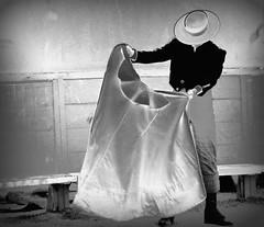 painting 1 (aficion2012) Tags: arles septembre 2017 aficionados practicos francia france corrida bullfight eral toro taureau tauromachie tauromaquia provence capote capa edited monochrome bw picasa traje de campero sombrero chapeau hat blackwhite