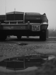 Lincoln (heresthething...) Tags: blackwhite continental mk iv lincoln car auto classic landyacht bw monochrome parked lumix g9 micro43rds reflection mood v8 american hiddenheadlights grill fog