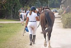 Insieme (Roybatty63) Tags: 2019 cavallo francesca nikon d80 equitazione amazzone