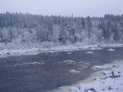 a river (VERUSHKA4) Tags: canon europe russia nord north murmansk murmanskyregion vue view nature river water stream bw eau season november hiver winter forest wood tree bank snow neige neve blanc white grey