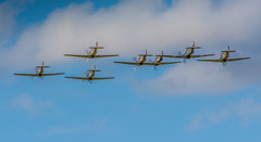 7 Hurricanes in formation (safc1965) Tags: hurricane shuttleworth collection old warden ww2 raf battle britain bedfordshire aircraft airshow airfield big wing photography
