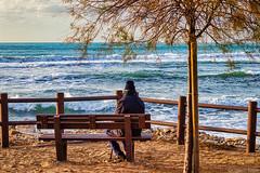 il Vecchio e il Mare - the old Man and the Sea (Eugenio GV Costa) Tags: approvato mare onde cielo albero vecchio gente oldman sea waves sky tree old people