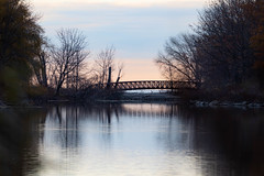 Early morning at the bridge (SusieMSB7) Tags: bridge nature pond water morninglight