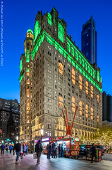 Trinity and US Realty Buildings (20191122-DSC09863) (Michael.Lee.Pics.NYC) Tags: newyork lowermanhattan zuccottipark joiedevivre markdisuvero sculpture publicart broadway night twilight dusk bluehour trinityandusrealtybuildings illuminated street architecture cityscape skyline shiftlens sony a7rm4 laowa12mmf28 magicshiftconverter