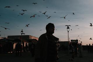 Essaouira-36