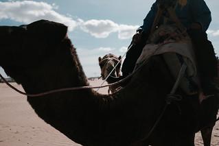 Essaouira-24