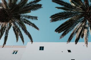 Essaouira-7