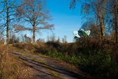 _DSC4200 (sebastianwerba) Tags: egglfing füssing badfüssing obernberg niederbayern inn innlandschaft werba sebastianwerba 23112019 baum bäume natur erholung freizeit wandern spazierengehen bayern landkreispassau