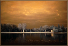 2019 11 23 Wörlitz Park IR 680nm - 45 (Mister-Mastro) Tags: wörlitzpark 680nm ir infrared water wasser reflexion reflection reflektion nochannelswap