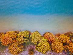 FALL COLORS (@JayJayasuriya) Tags: scenic hdrphotography hdr vibrant autumn naturalbeauty beautyofnature beautyofaustin beautifulaustin texas austintexas atx lakeaustin lake jayjayasuriyaphotography jayjayasuriya landscapephotography landscape naturephotography photography aerialphotography droneshot drone natural forest aerialview nature fallcolors fall