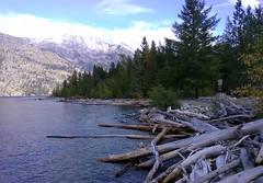 Outwash (edenseekr) Tags: lucernelanding lakechelan northcascadeswa logs evergreens mountain wenatcheenationalforest