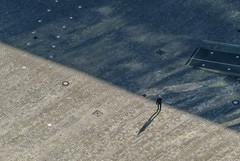 Man Walking On Pavement (Aerial Photography) Tags: by in obb 23112002 audigelände bavaria bayern braun deutschland ettingerstrase farbe fotoklausleidorfwwwleidorfde fotoklausleidorfwwwleidorfaerialcom germany grau ingolstadt luftaufnahme luftbild menschen p2 s2p06302 schwarz aerial black brown color colour grey negro outdoor people