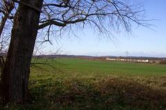 2 x Go Ahead FLIRT + DB FLIRT  - Nudow (Rene_Potsdam) Tags: flirt nudow railroad züge spoorwegen duitsland germany treinen treni br429 tren deutschland trenes trains brandenburg europe europa