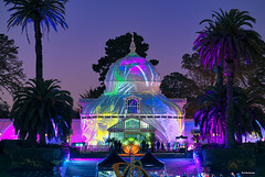 Conservatory of Flowers (davidyuweb) Tags: conservatory flowers conservatoryofflowers sanfrancisco 三藩市 holiday lights sf night bloom