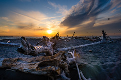 Drifting Away (Neil Cornwall) Tags: 2019 canada lakeerie october ontario pointpelee fall sunset