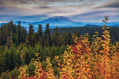 Mount Saint Helens Autumn Mountain Layers (Cole Chase Photography) Tags: giffordpinchotnationalforest mountsainthelens fall autumnfoliage autumn washington pacificnorthwest volcano october