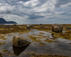 Reflecting on Rocky Harbour (rick miller foto) Tags: 80d canon landscape clouds reflections ocean atlantic coast canada labrador newfoundland rockyharbour