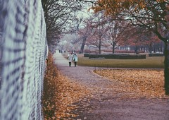 Leaves that are green (erlingraahede) Tags: muted bedifferent colorful leafs melancholic november vsco canon kongenshave copenhagen people lines poetic autumn raahedep