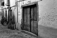 The old door (Tapas in the sun) Tags: d750 nikon extremadura bnw bw blackwhite whitevillage spain monochrome pueblosblancos noiretblanc hervás negroyblanco 2019 españa blackandwhite