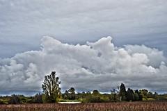 Episode méditerranéen (EmArt baudry) Tags: épisodecévenole épisodeméditerranéen gard gardon occitanie languedocroussillon river rivière composition ciel sky skyporn hdr nikon nature nuage cloud