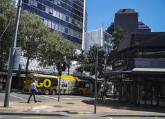 Manners Street - Wellington (andrewsurgenor) Tags: trolleybuses trolleybus trolleycoach trolleybuswellington trolebús trolejbusowy trolejbus troleybus obus gowellington filobus nzbus