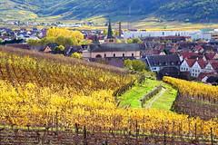 Turckheim (Alsace, F) (pietro68bleu) Tags: alsace hautrhin village automne vignoble coteaux clocher église
