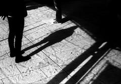 風紋 (wind ripple) (Dinasty_Oomae) Tags: aires35iiia aires35 aires アイレス35iiia アイレス35 アイレス 東京都 東京 tokyo 台東区 taitoku 上野 ueno 白黒写真 白黒 monochrome blackandwhite blackwhite bw outdoor