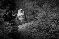 Rhein (StellaMarisHH) Tags: europa deutschland hessen rhein schloss burg sw bw canon canoneos60d eos60d 60d sigma18200 sigma photoscape
